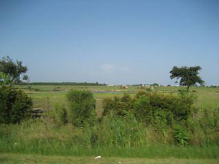 Roadside Prairie w farm,animals